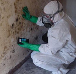 Mold Remediation in New Jersey, Pennsylvania, & Delaware